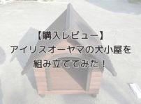 【購入レビュー】アイリスオーヤマの木製屋外犬小屋(中型犬)を組み立ててみた!【すごく簡単】