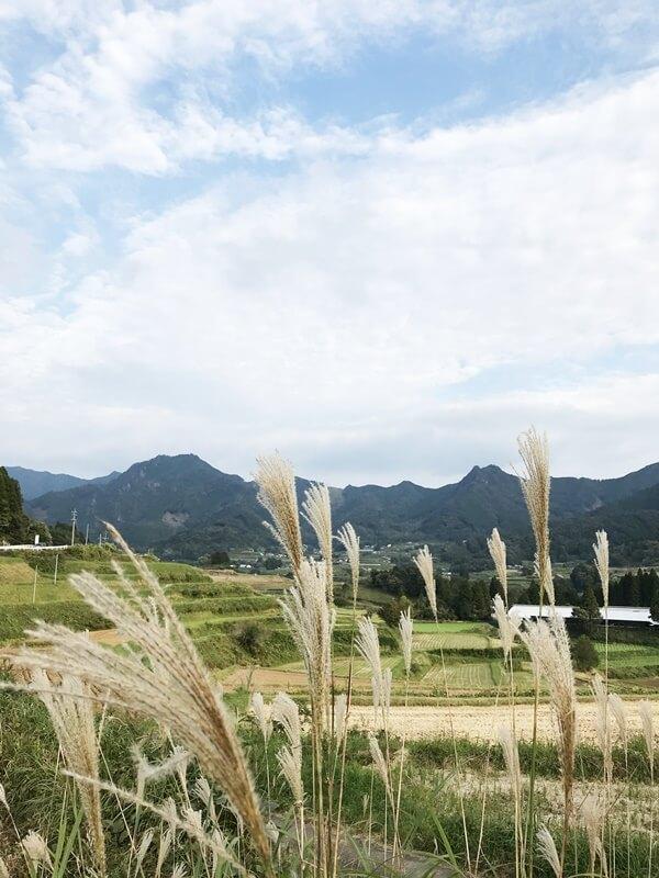 高千穂の農村の景色
