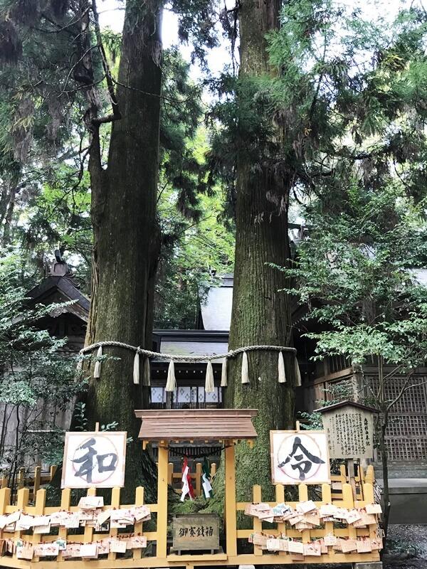 高千穂神社の写真